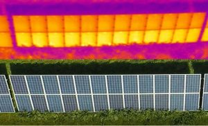 This is an example of how plants growing over solar panels can create shading and effect the productivity of the solar module.
